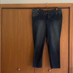 Plus size dark wash skinny jeans.